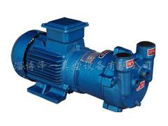 2BV系列水环式真空泵